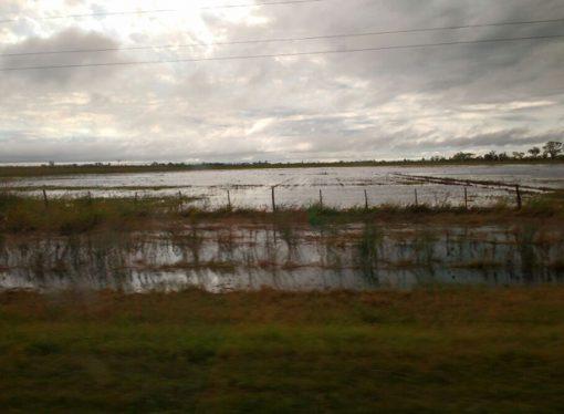 Las lluvias ponen en duda los planes de siembra gruesa en el centro norte de Santa Fe