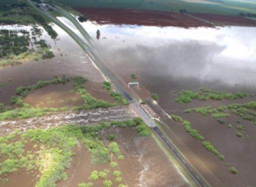 En Santa Fe la inundación dejó pérdidas por u$s 2.000 millones en soja