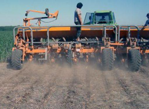 Se complica la siembra de maíz por la falta de humedad en Córdoba y Santa Fe