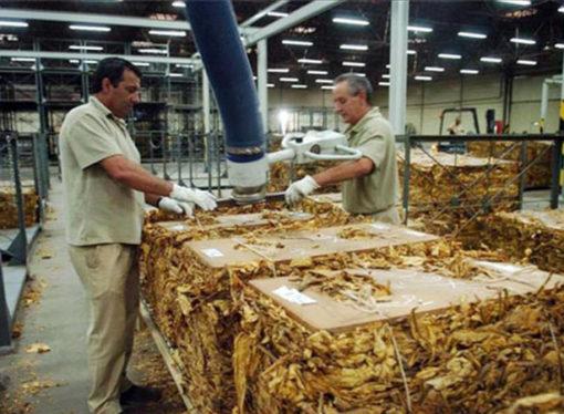 La industria se desplomó 7,9 por ciento y entró en recesión, según el Indec
