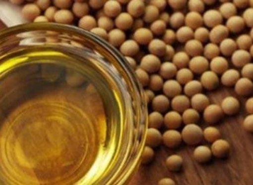 Argentina sigue siendo el primer exportador de aceite de soja