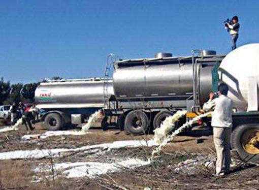 Recolectores de leche aseguran que están a punto de desaparecer