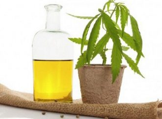 Santa Fe producirá aceite de cannabis para uso medicinal