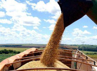 Cómo impacta la eliminación del Fondo Sojero en Santa Fe