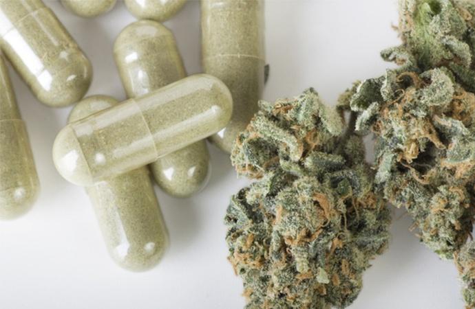 Cannabis medicinal: la provincia está lista para producir