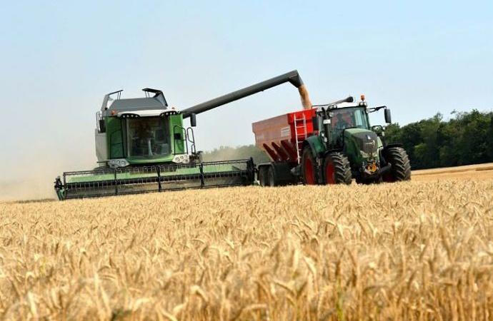 Santa Fe: ya se trilló el 85% de la soja tardía y la siembra de trigo avanza sostenidamente