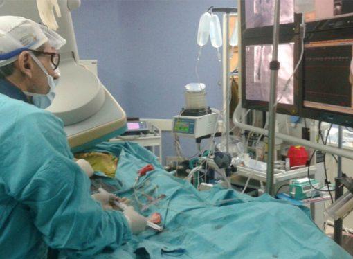 Santa Fe es la tercera provincia en cantidad de trasplantes y donantes