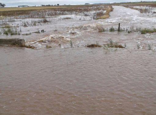 Evacuados, cortes de luz e inundaciones, el resultado de un temporal que no da tregua