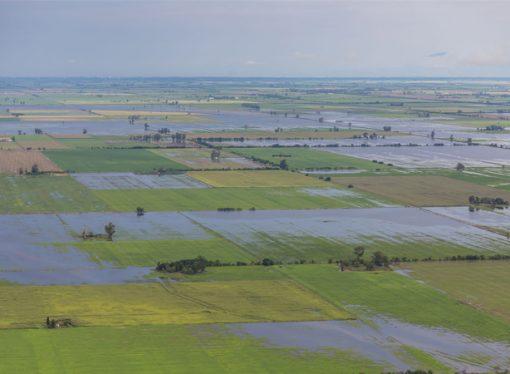 Estiman en U$S700 millones las pérdidas en el sector agrícola