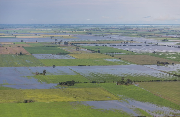 Las inundaciones dañaron el 25% de la producción agrícola y el 34% del stock vacuno nacional