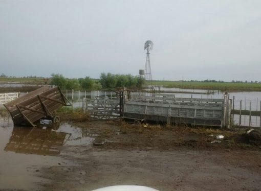 Las inundaciones fueron letales para un tambo que cerró tras 100 años