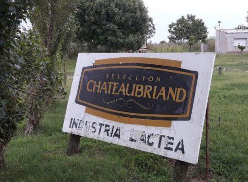 Crisis tambera: despidieron a empleados de una fábrica de quesos en Santa Fe