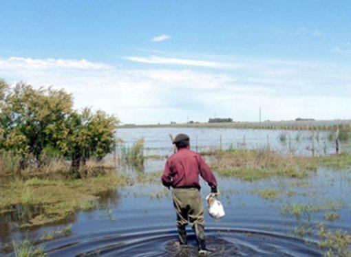 """FAA: """"Los pequeños productores esperamos que el Gobierno nos ponga en su agenda"""""""