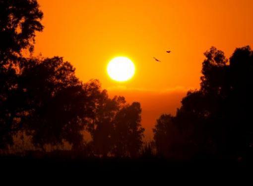 Se esperan altas temperaturas para los próximos meses