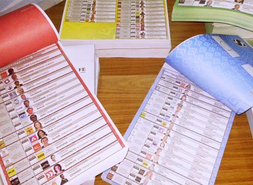 Elecciones 2017: se presentaron 54 listas en el departamento San Martín