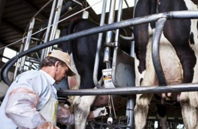 Jornada sobre financiamiento para el sector lácteo