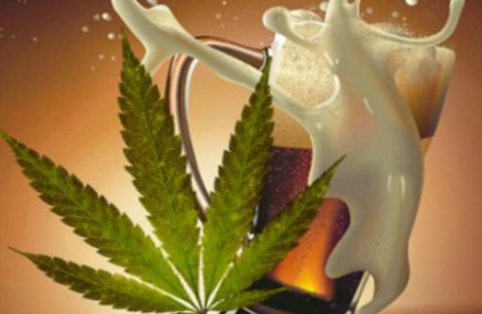 Fabricantes de reconocida marca apuestan a crear una cerveza con marihuana