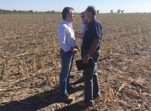 Etchevehere se reunió con productores santafesinos afectados por la sequía