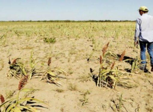 """En medio de la sequía, Santa Fe """"podría tener un as en la manga"""""""