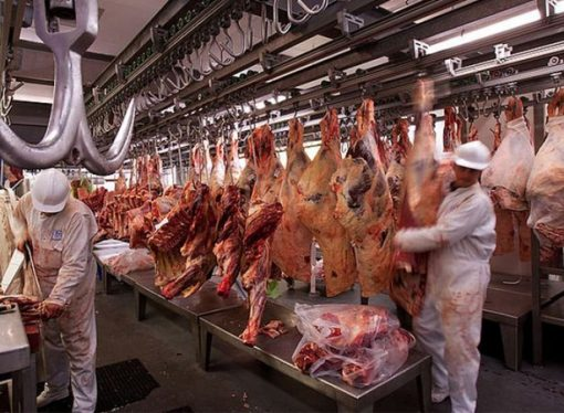 Santa Fe duplicó la exportación de carne congelada a China