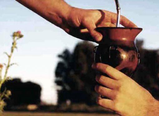 Por qué el 30 de noviembre es el Día Nacional del Mate