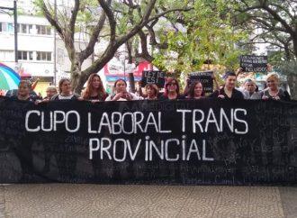 El colectivo trans reclamó al Senado la aprobación del cupo laboral provincial
