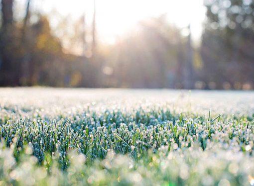 Fin de semana frío: la temperatura comenzará a aumentar a partir del lunes