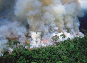 El humo por los incendios del Amazonas llegará a la provincia de Santa Fe