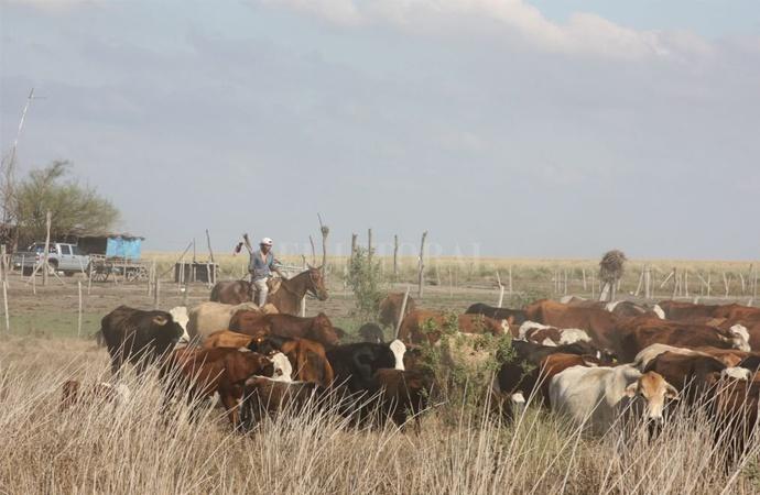 Santa Fe busca crédito internacional para desarrollo rural
