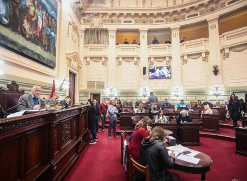 Diputados dio media sanción al proyecto para luchar contra la trombofilia