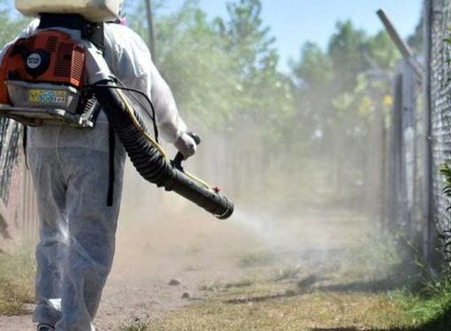 """Dengue: Parola dijo que Santa Fe está """"con código amarillo"""""""