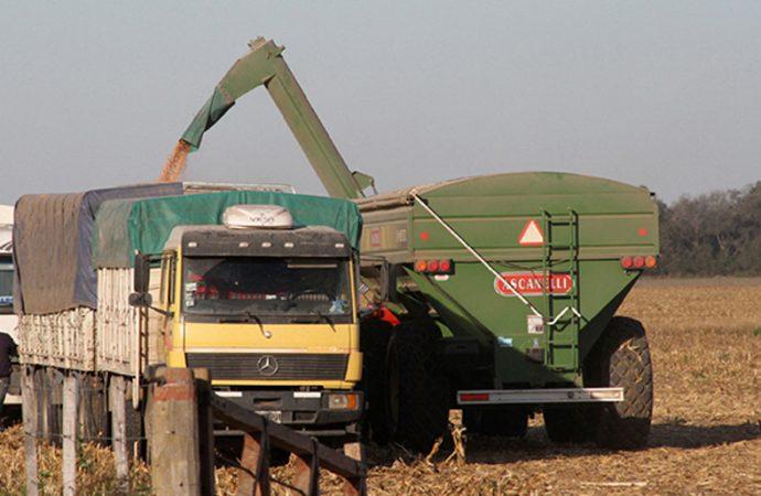 En plena cosecha, el Municipio le impide a camioneros viajar al puerto