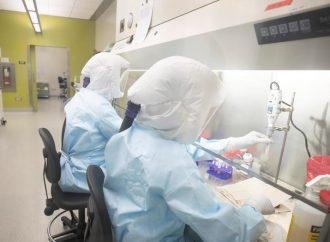 La Provincia registró 13 nuevos casos positivos de COVID-19