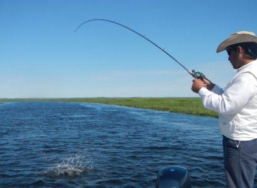 Media sanción a la veda de la pesca deportiva y comercial en Santa Fe