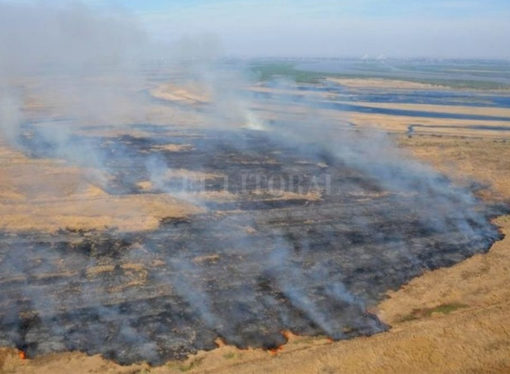 Incendios: agrónomos santafesinos piden responsabilidad social y castigo a los cuplables