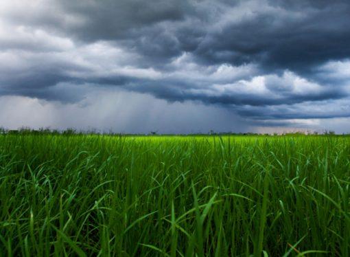 Pronóstico: las zonas en las que podría llover más (y menos) durante septiembre, octubre y noviembre
