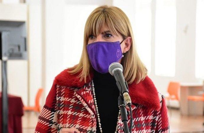 Rodenas le pidió a los diputados que brinden el debate por la ley de conectividad