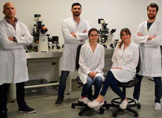 """Relanzaron programa """"Raíces"""" para repatriar científicos argentinos que trabajan en el exterior"""