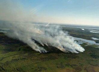 Suman a 2.600 hectáreas del Delta del Paraná como áreas protegidas