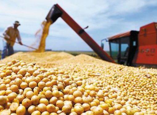 La millonaria suma que aporta Sastre a la caja de Nación por retenciones de soja